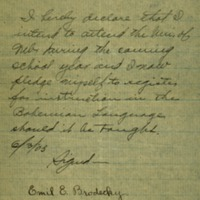 Emil E. Brodecky declaration