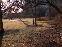 Cather Garden Views