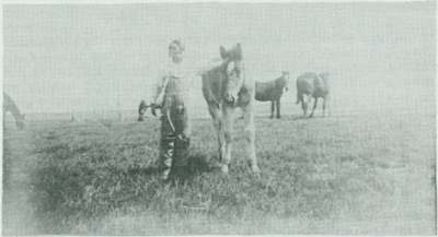 Jim Metzger standing next to a saddle horse.