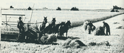 Photo of large combines taken from The Furrow, a magazine published by John Deere, Co.