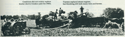Photo of a crew threshing with tractors