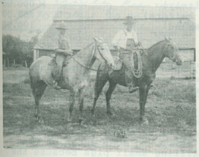 Wes and Spike, saddle horses.