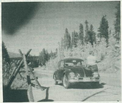 VW Bug automobile.
